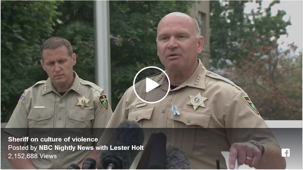 SHERIFF SLAMS ANTI-GUN REPORTERS