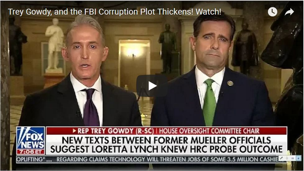 Trey Gowdy: FBI Agents Texted About 'Secret Society' The Day After Trump's Election Victory