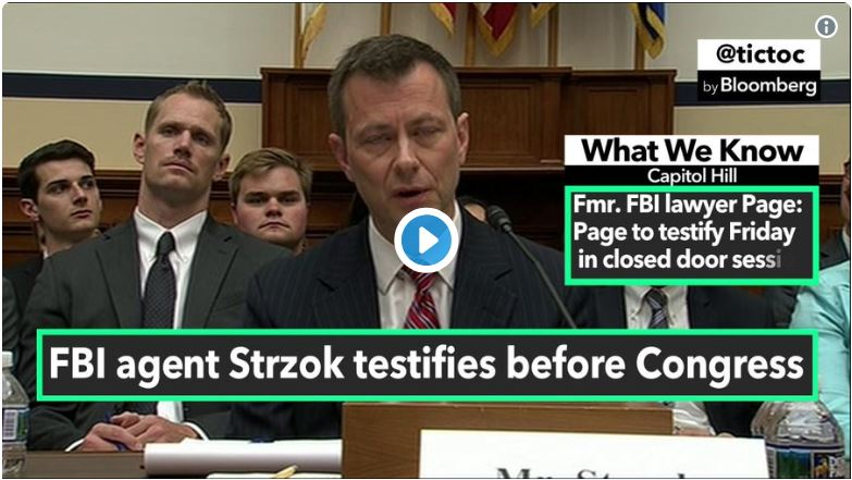 'What Does Trump Support Smell Like, Mr. Strzok?'