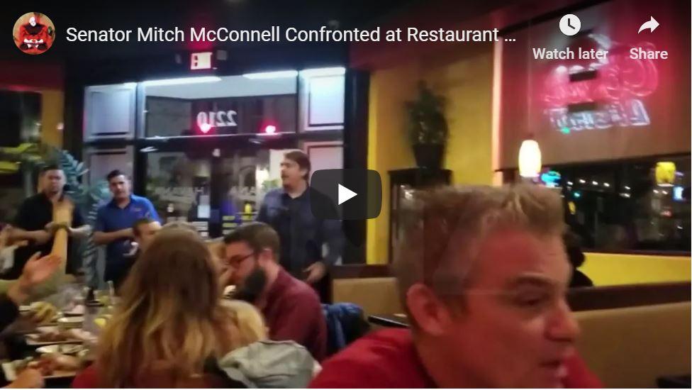 Turtle Harassed At Restaurant…