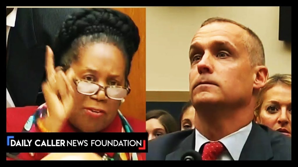 Sheila Jackson Lee can't handle the truth! (epic)…